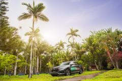 """东风Honda UR-V自诞生以来得到了""""新中产阶层""""的"""